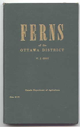 Image for FERNS OF THE OTTAWA DISTRICT.
