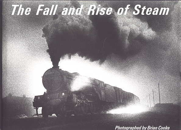 Image for THE FALL AND RISE OF STEAM.