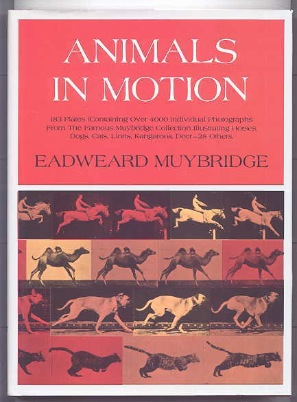 Image for ANIMALS IN MOTION.