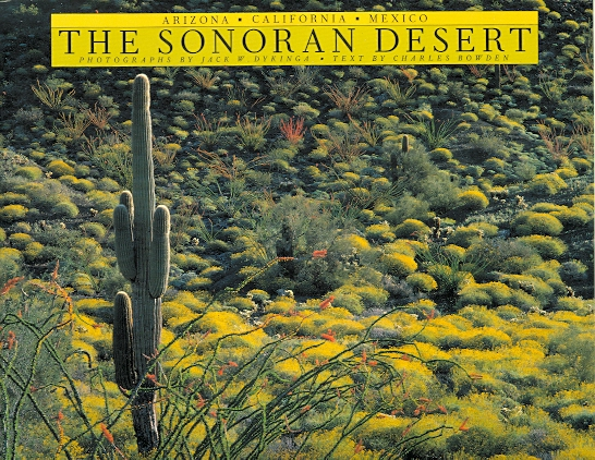 Image for THE SONORAN DESERT.
