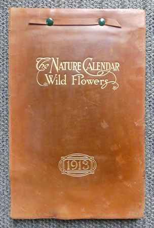 Image for THE NATURE CALENDAR - WILD FLOWERS.  1913.
